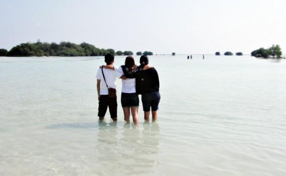 travel partner